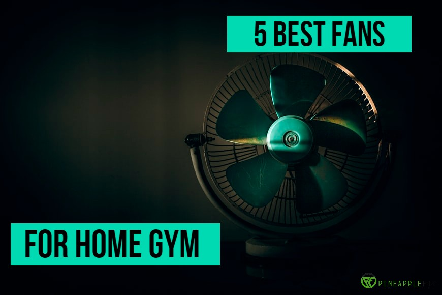 fans for home gym